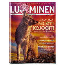 Luominen-lehti numero 31
